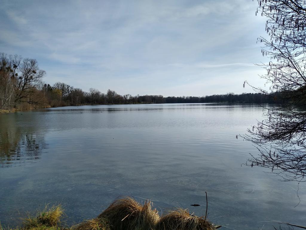 Blick auf den Feldmochinger See