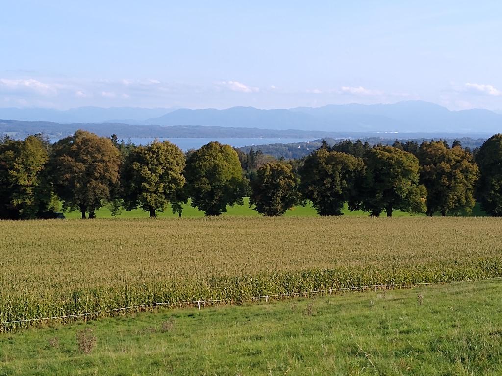 Blick von der Ilkahöhe über den Starnberger See